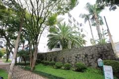 APARTAMENTO-a-venda-Cabral-3-dormitorios-REF-119