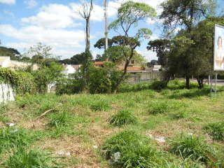 Terreno / Loteamento Barreirinha Curitiba