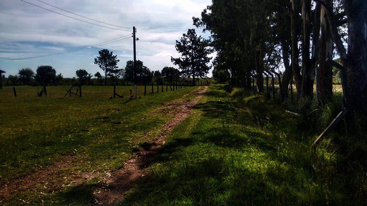 Chácara à Venda - Guarituba