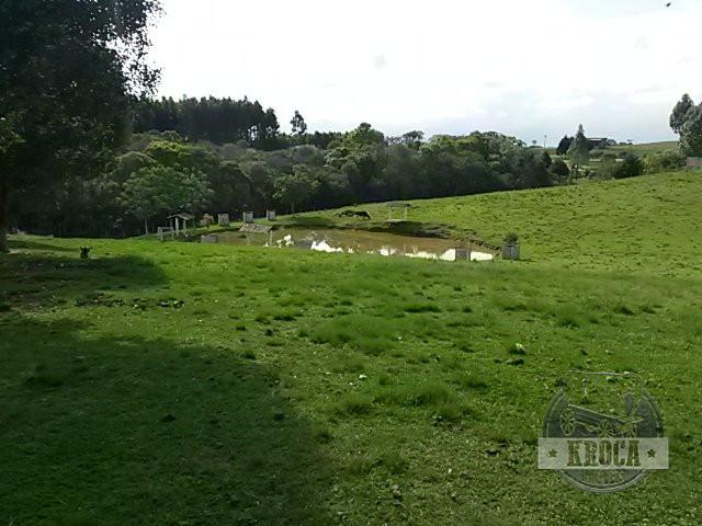 Chácara à Venda - Bela Vista