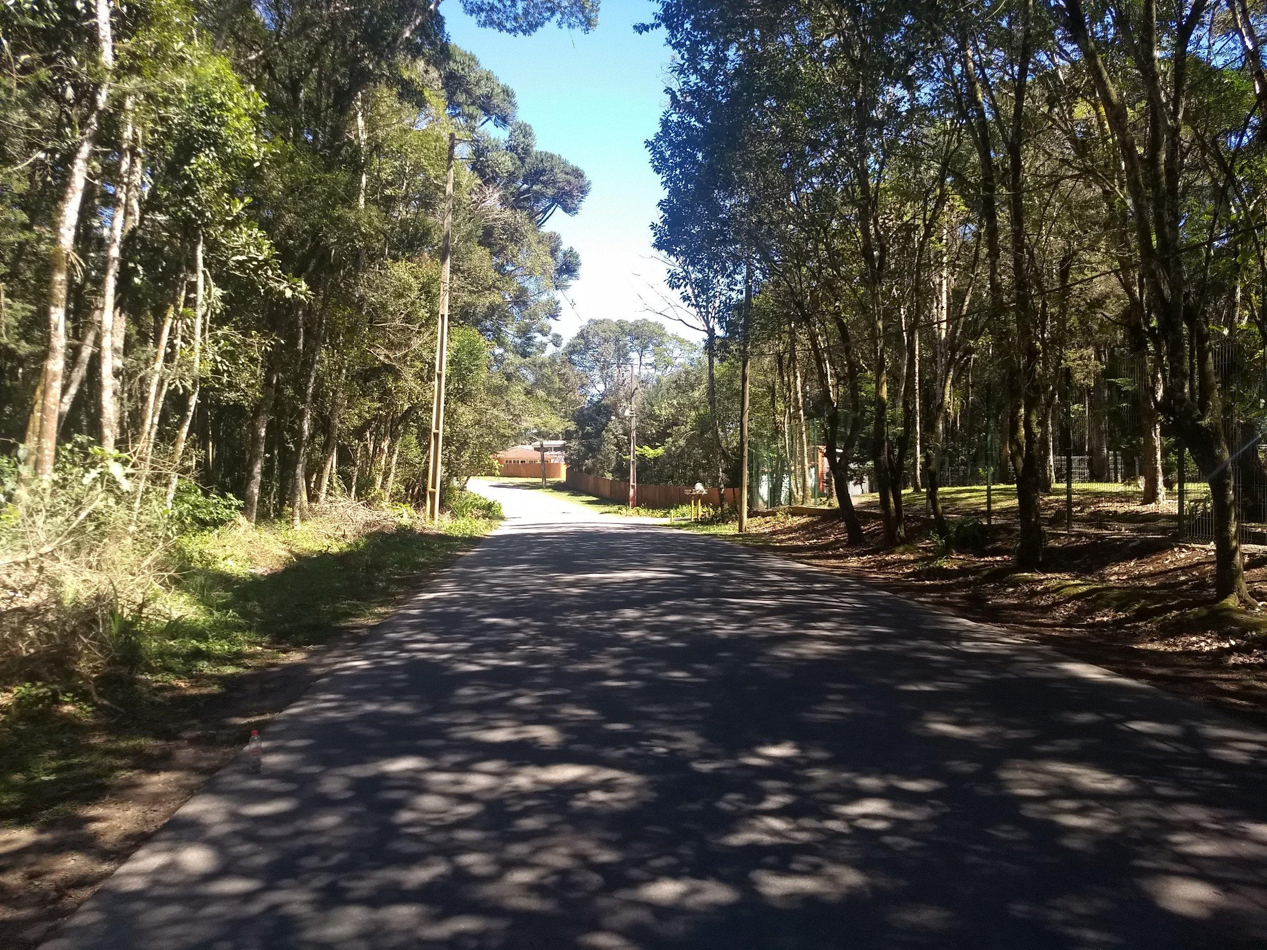 Venda CHÁCARA/FAZENDA/SÍTIO COLOMBO PR Brasil