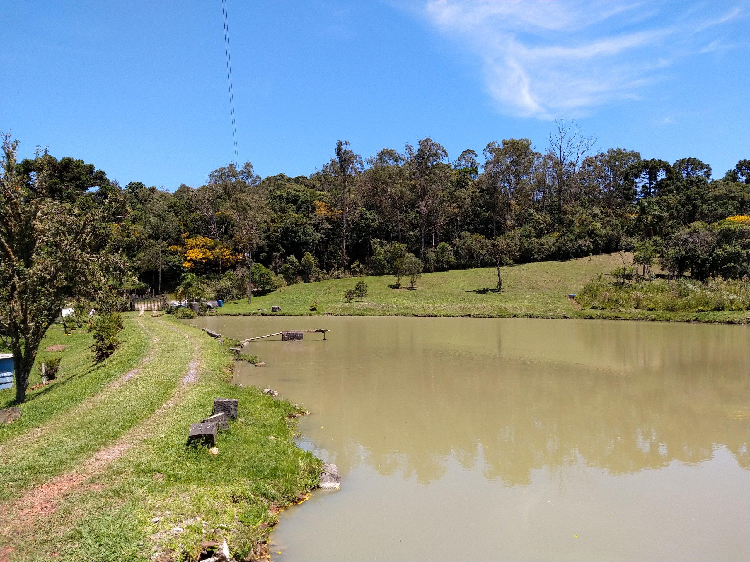 Venda CHÁCARA/FAZENDA/SÍTIO QUATRO BARRAS PR Brasil