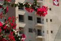 Foto 1 - APARTAMENTO em prédio com elevador, em CURITIBA - PR, no bairro Tingui - Referência 520.2020