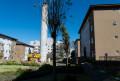 Foto 57 - APARTAMENTO em CURITIBA - PR, no bairro Campo Comprido - Referência LE00231