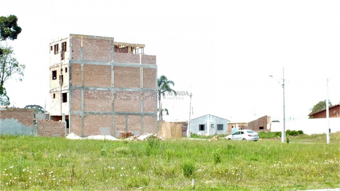 Foto 9 - TERRENO EM CONDOMÍNIO em SÃO JOSÉ DOS PINHAIS - PR, no bairro Miringuava - Referência TE00021