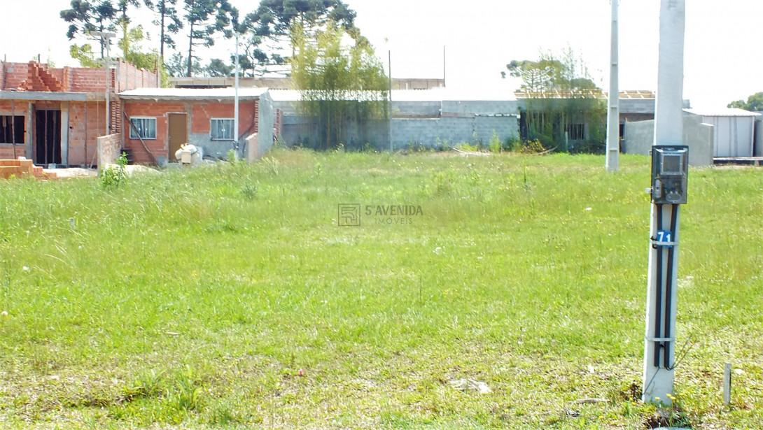 Foto 10 - TERRENO EM CONDOMÍNIO em SÃO JOSÉ DOS PINHAIS - PR, no bairro Miringuava - Referência TE00021