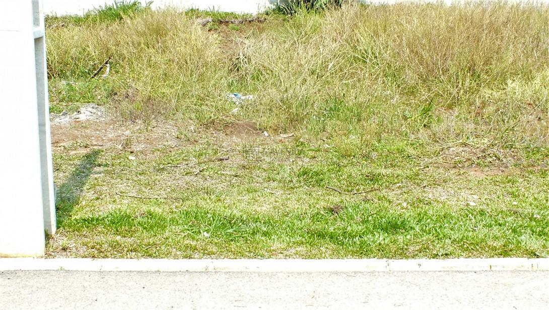 Foto 12 - TERRENO EM CONDOMÍNIO em SÃO JOSÉ DOS PINHAIS - PR, no bairro Miringuava - Referência TE00021
