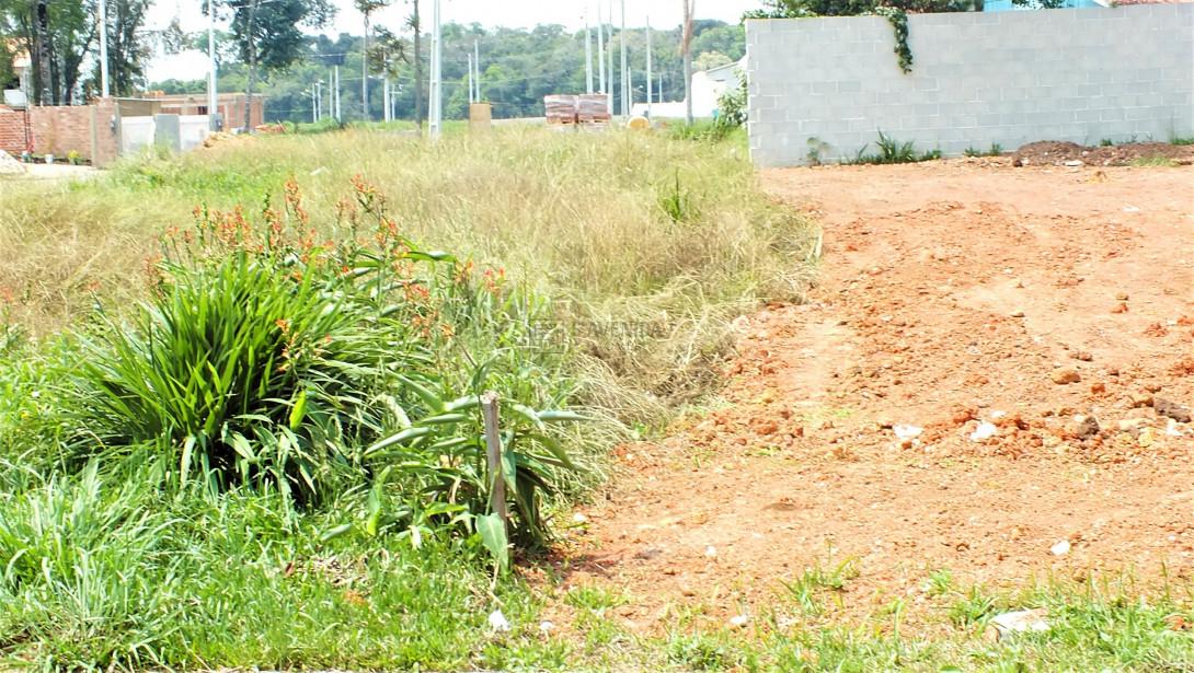 Foto 15 - TERRENO EM CONDOMÍNIO em SÃO JOSÉ DOS PINHAIS - PR, no bairro Miringuava - Referência TE00021