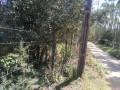 Foto 15 - TERRENO em CURITIBA - PR, no bairro Lamenha Pequena - Referência AN00082