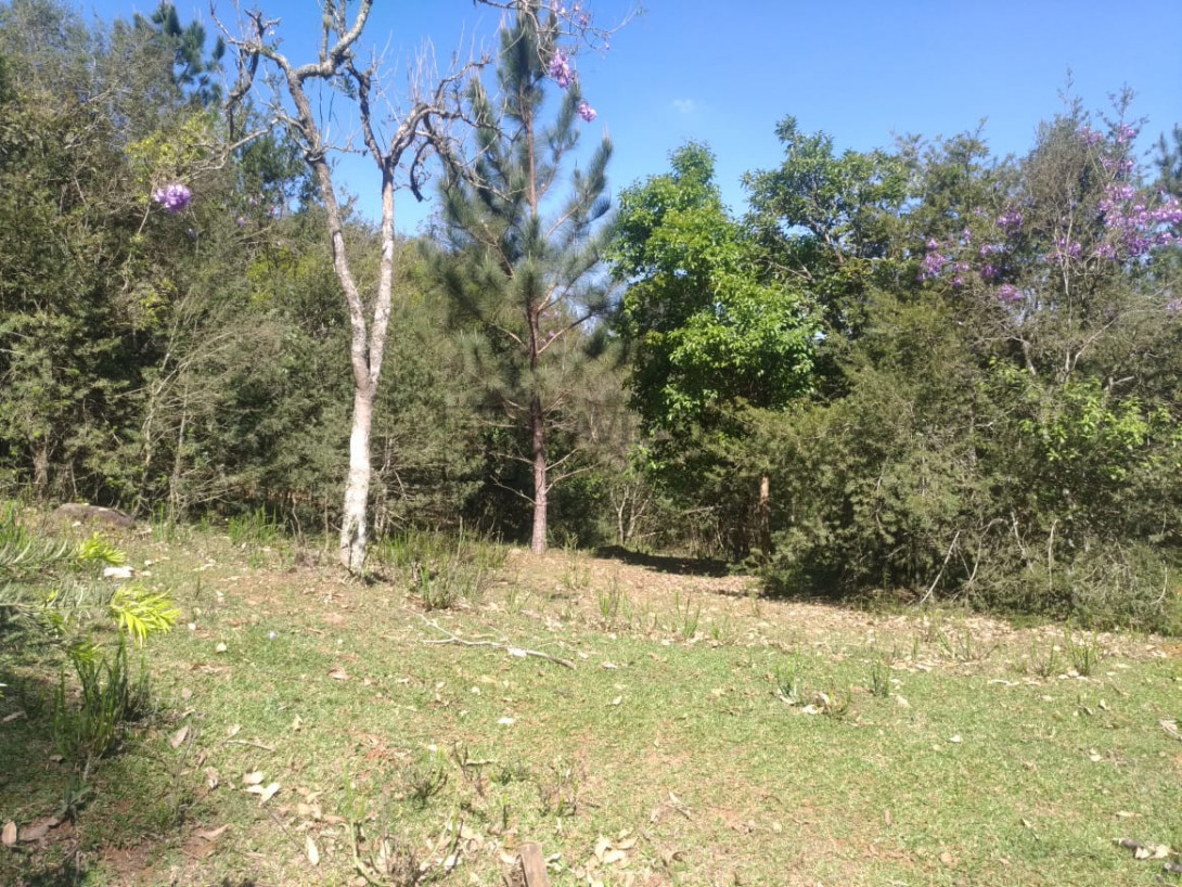 Foto 1 - TERRENO em CURITIBA - PR, no bairro Lamenha Pequena - Referência AN00083