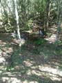 Foto 13 - TERRENO em CURITIBA - PR, no bairro Lamenha Pequena - Referência AN00083