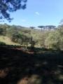 Foto 5 - TERRENO em CURITIBA - PR, no bairro Lamenha Pequena - Referência AN00084