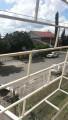 Foto 30 - SOBRADO em PINHAIS - PR, no bairro Jardim Pedro Demeterco - Referência AN00105