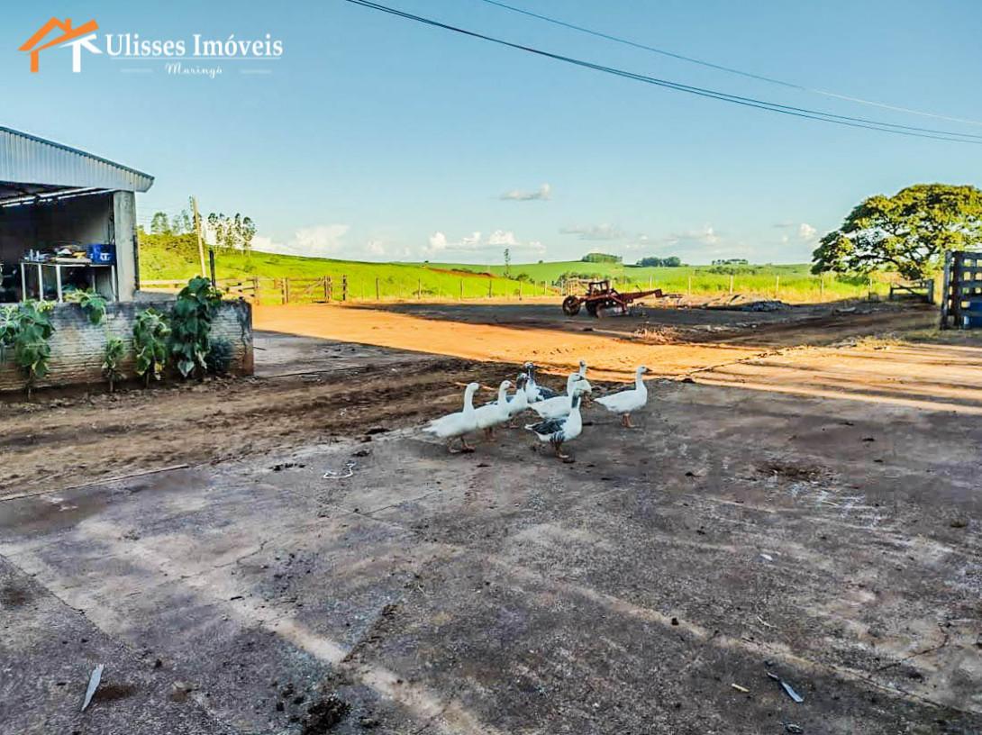 Foto 5 - FAZENDA - ALTO PADRÃO - BOM SUCESSO