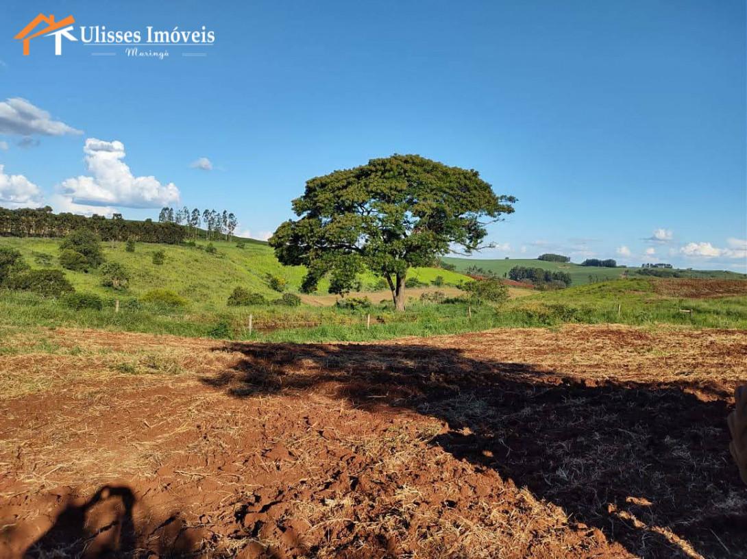 Foto 32 - FAZENDA - ALTO PADRÃO - BOM SUCESSO